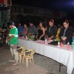 Lakan at Mutya ng Luzviminda 2015 (4)