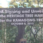 Capt. Abad witnesses unveiling of heritage tree marker in Congress. (38)